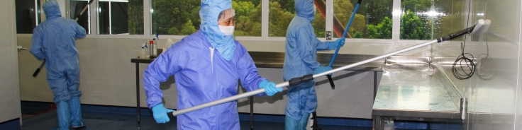 Cleanroom pre-validation cleaning